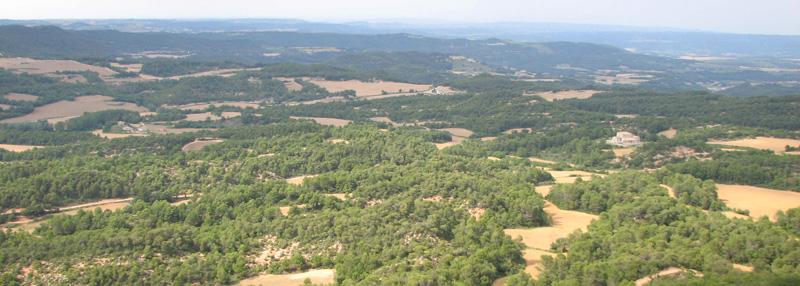 Boscos i camps a la zona de Bellprat. Foto: Observatori del Paisatge