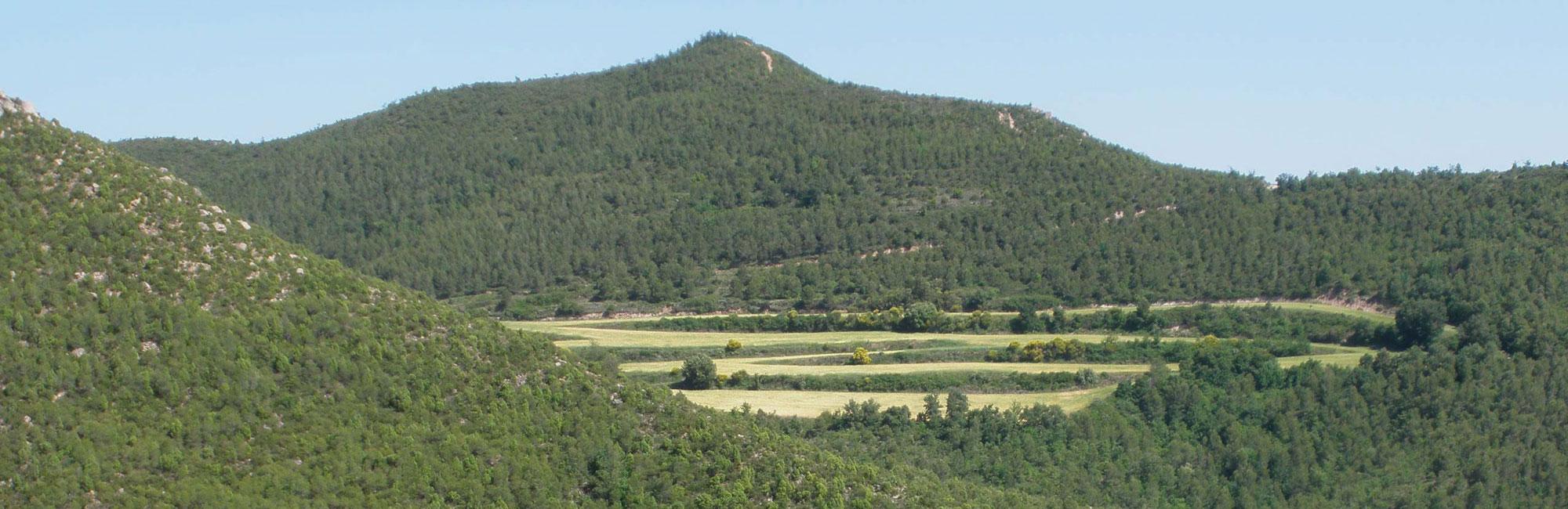 Rubió – Castelltallat – Pinòs
